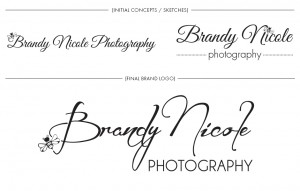 Brand Image Design by Dandyline Designs - Brandy Nicole Photography