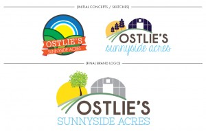 Brand Image Design by Dandyline Designs - Ostlie Farms